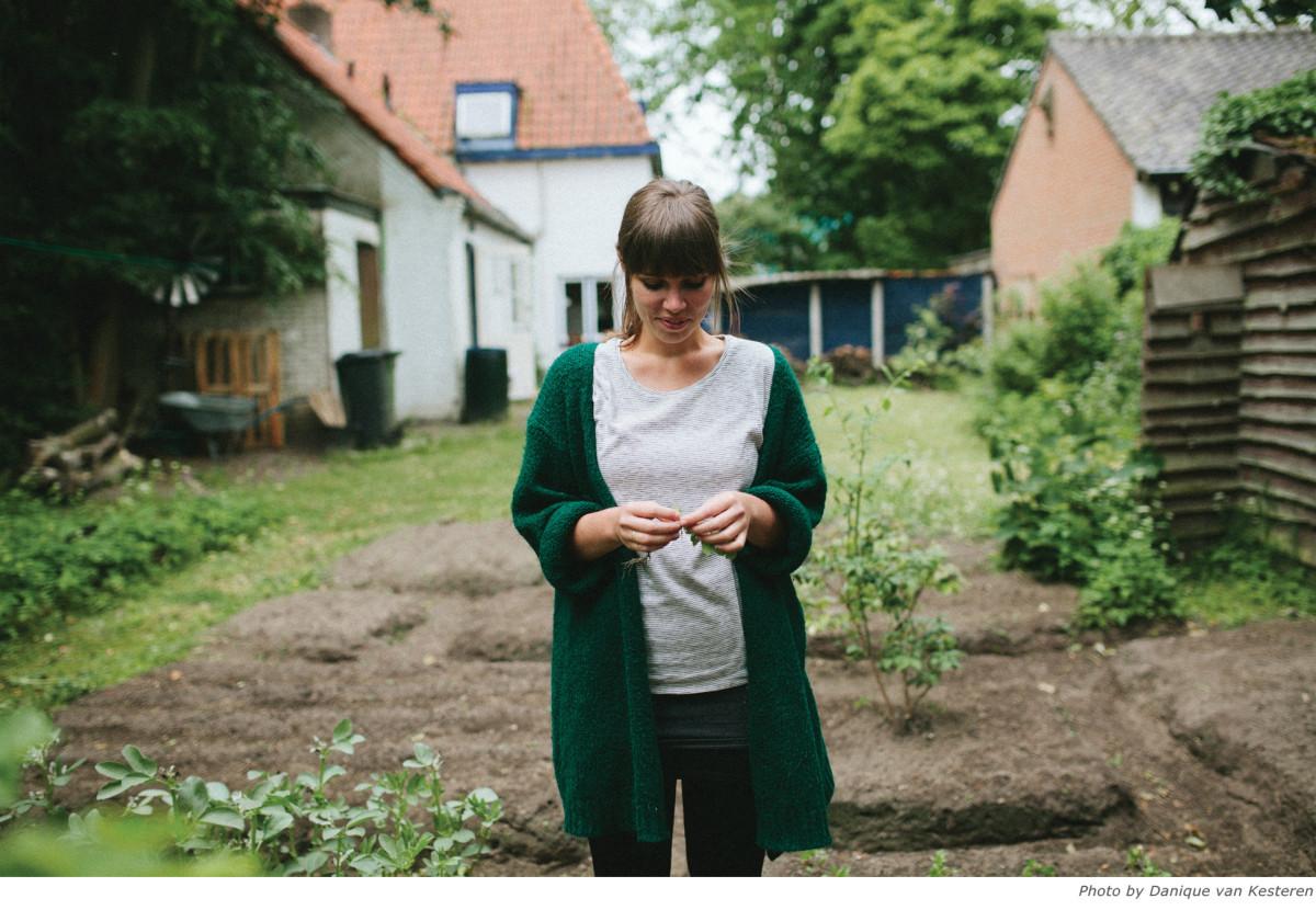 Portret_liekeland