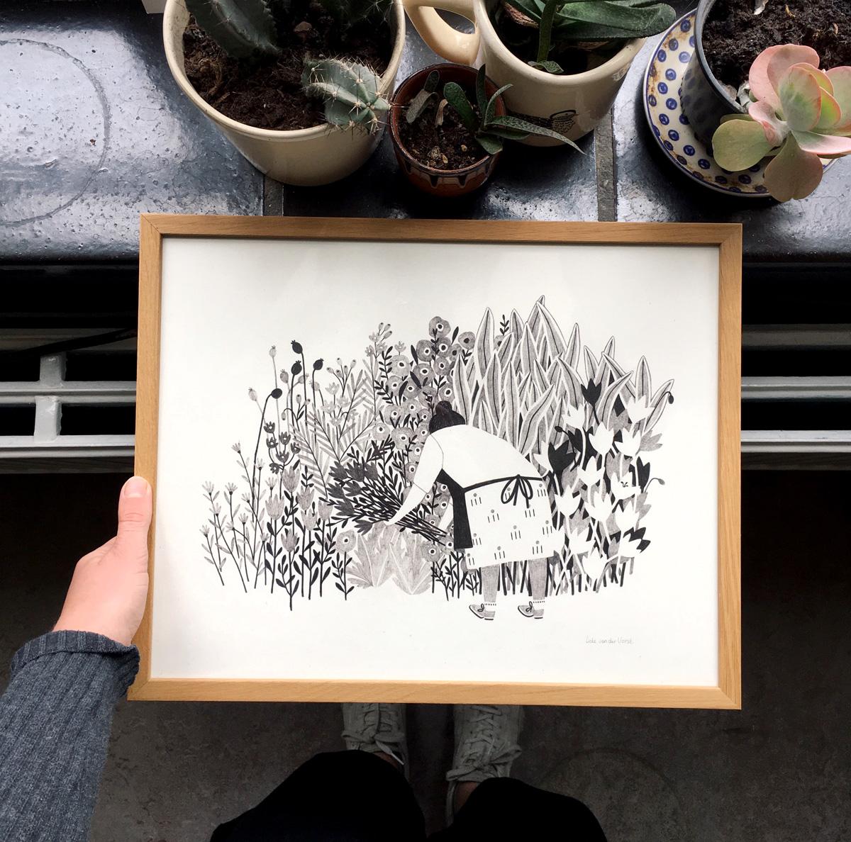 The first bloemenstruik illustration - Liekeland